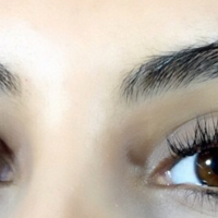 Flutter Them Lashes